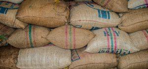 Riso: mercato invaso dal prodotto del Myanmar