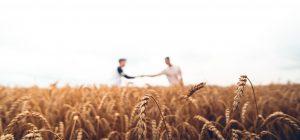 Lavoro: 8 italiani su 10 vorrebbero un figlio agricoltore