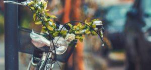 Amsterdam, città delle biciclette studia una pista ciclabile torinese