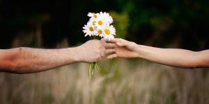 13 novembre: Giornata Mondiale della Gentilezza