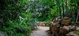 Milano: è nato il primo giardino terapeutico 'anti afa'