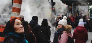 Smog: Coldiretti, solo 31 mq di verde a testa incrementare numero alberi