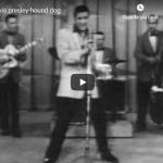 ELVIS PRESLEY / Hound Dog