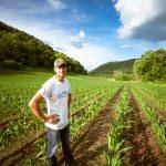 UE: al Sud lavoro per 22mila nei campi, ma 3 su 4 respinti