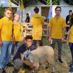 Clima: Coldiretti, addio a 2 mln di mucche, pecore e capre