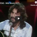 CAT STEVENS / Wild World