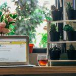 Lavoro: burocrazia spegne i sogni di 1 giovane su 2