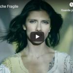 ELISA / ANCHE FRAGILE