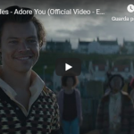 HARRY STYLES   / ADORE YOU