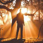 Luce e pazienza per tenere a bada la paura. Parola di psicoterapeuta