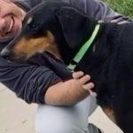 Tiziano Ferro che coccola il suo cane emoziona il web