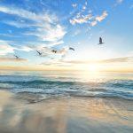 E' già assalto alle spiagge nell'anno più caldo dal 1800