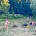 Nudista rincorre cinghiale dopo furto borsa. La foto diventa virale