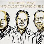 Nobel della Medicina agli scopritori del virus dell'epatite C