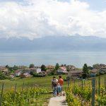 Covid-19: in Zone Rosse e Arancioni chiusi 5mila agriturismi