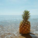 Estate: in spiaggia ... e non solo torna il pranzo al sacco