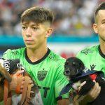 Romania, cani in campo per favorirne le adozioni