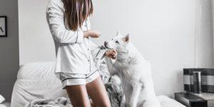Cani per aiutare a diagnosticare il Covid-19 ... dall'odore