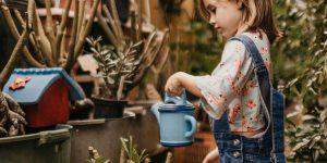 Sipps: attenti a bambini e gruppi nei cortili. Aprire invece le finestre